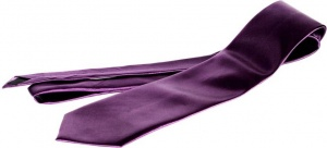 Uni Carress Solid Men's Tie (Purple) Carma-Ty-316